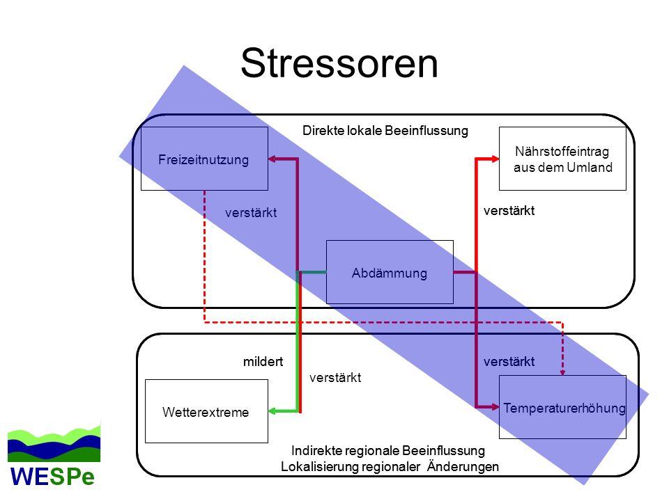 Stressoren Direkte lokale Beeinflussung Direkte lokale Beeinflussung N