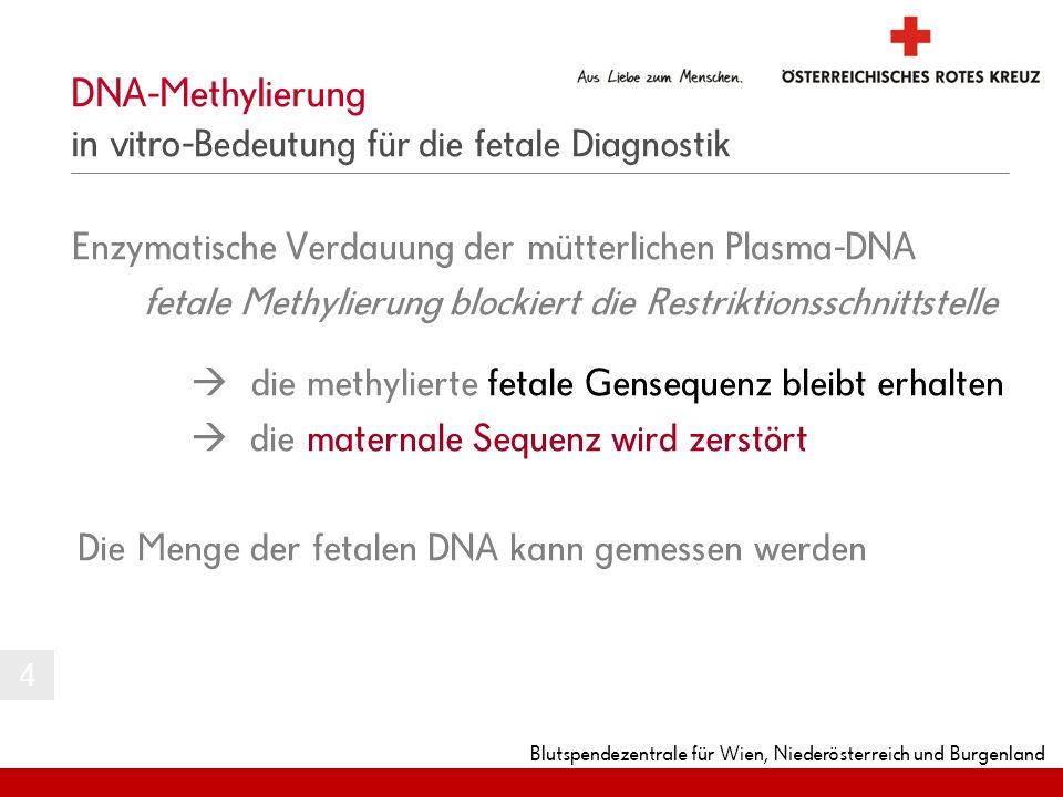 DNA-Methylierung in vitro-Bedeutung für die fetale Diagnostik