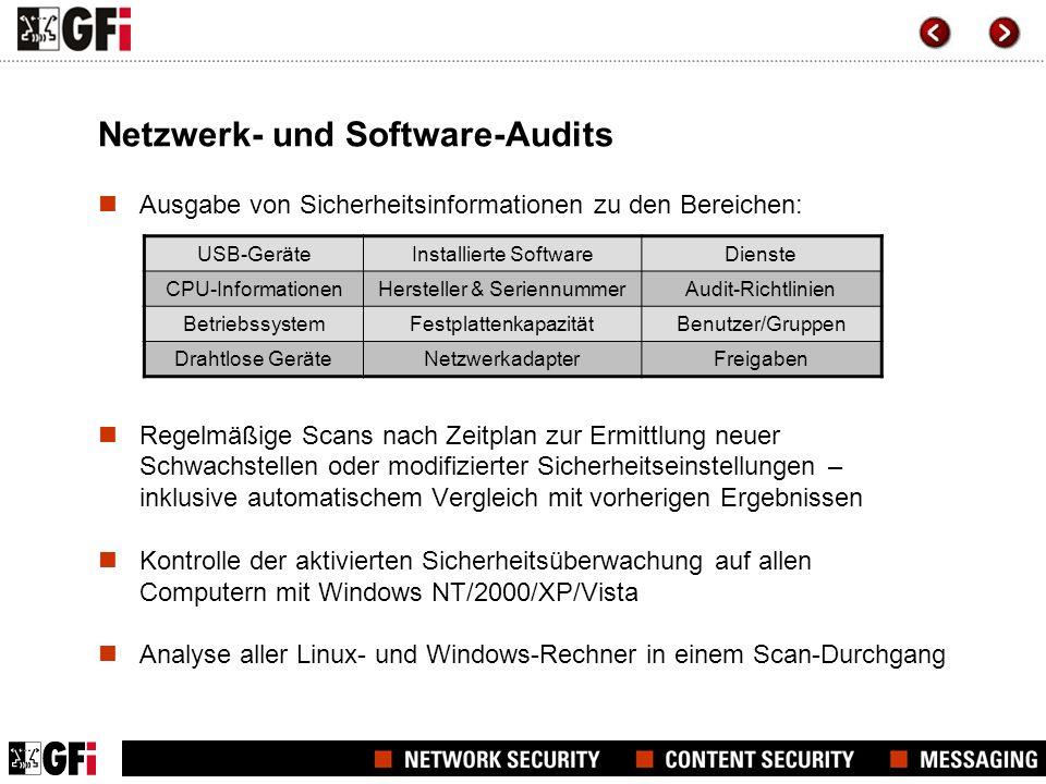 Netzwerk- und Software-Audits
