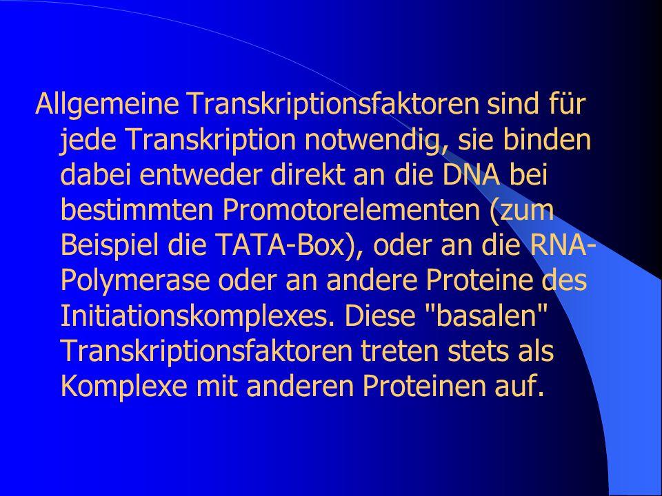 Allgemeine Transkriptionsfaktoren sind für jede Transkription notwendig, sie binden dabei entweder direkt an die DNA bei bestimmten Promotorelementen (zum Beispiel die TATA-Box), oder an die RNA-Polymerase oder an andere Proteine des Initiationskomplexes.