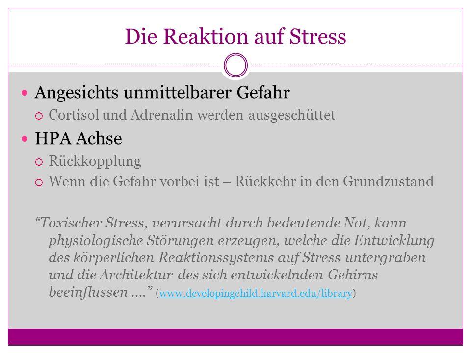 Die Reaktion auf Stress