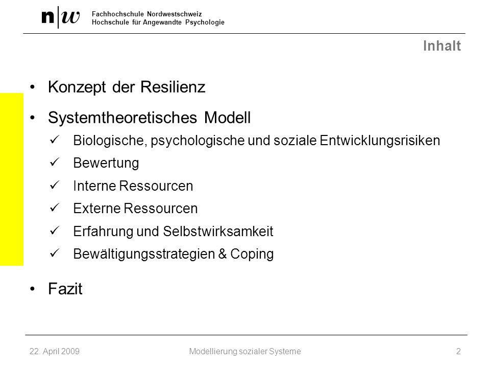Modellierung sozialer Systeme