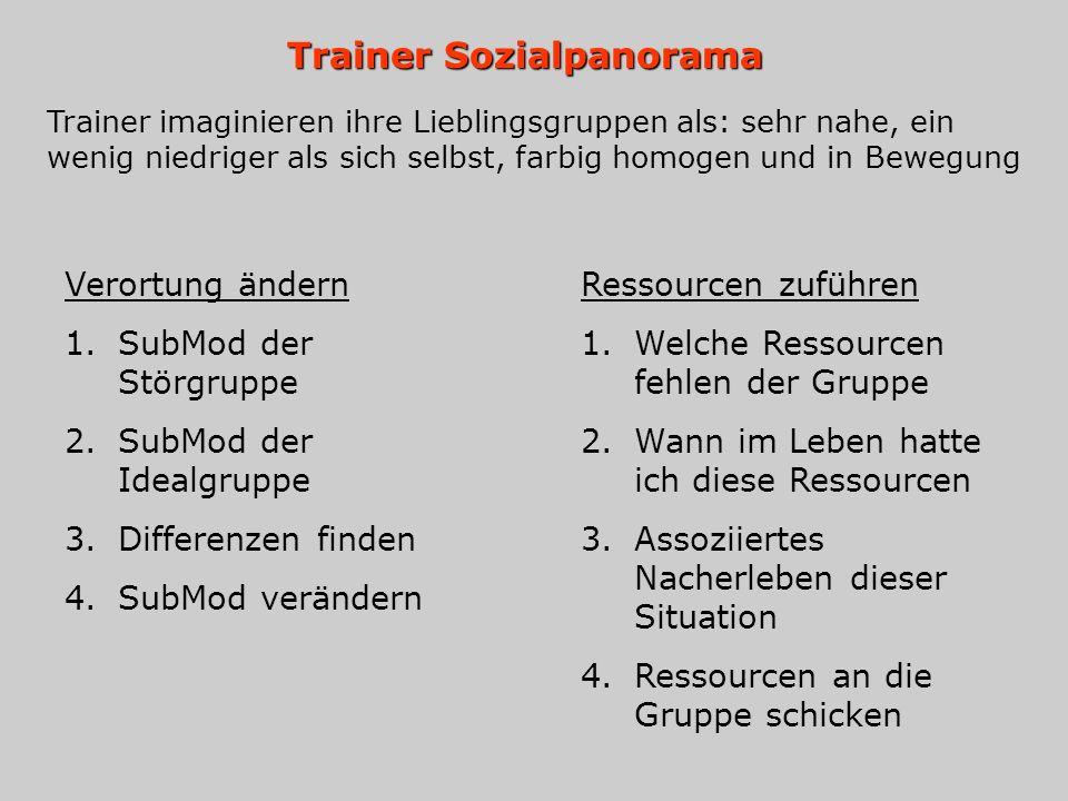Trainer Sozialpanorama