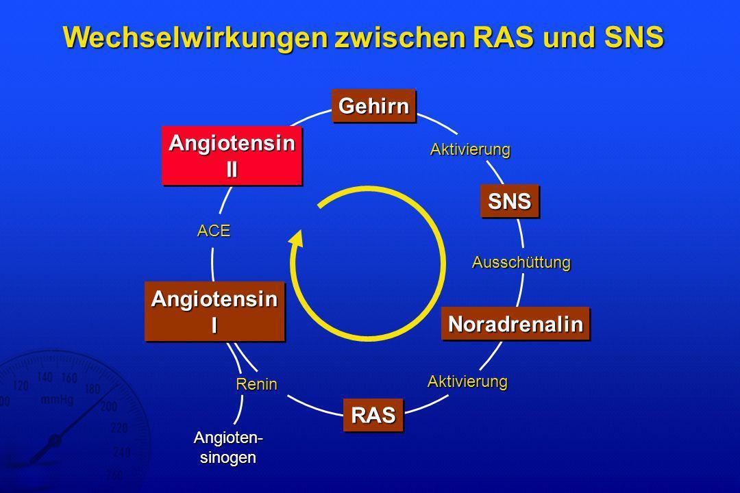 Wechselwirkungen zwischen RAS und SNS
