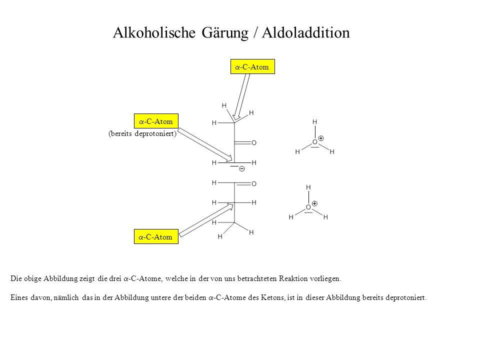 Alkoholische Gärung / Aldoladdition