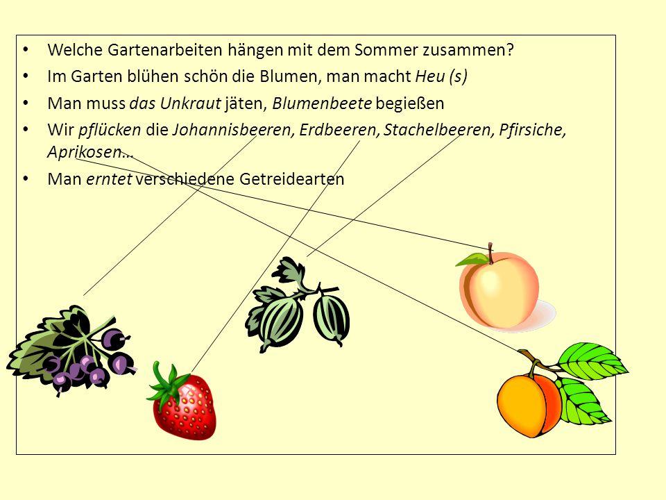 Welche Gartenarbeiten hängen mit dem Sommer zusammen
