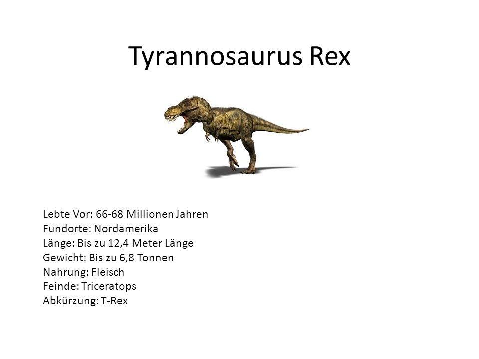 Tyrannosaurus Rex Lebte Vor: 66-68 Millionen Jahren