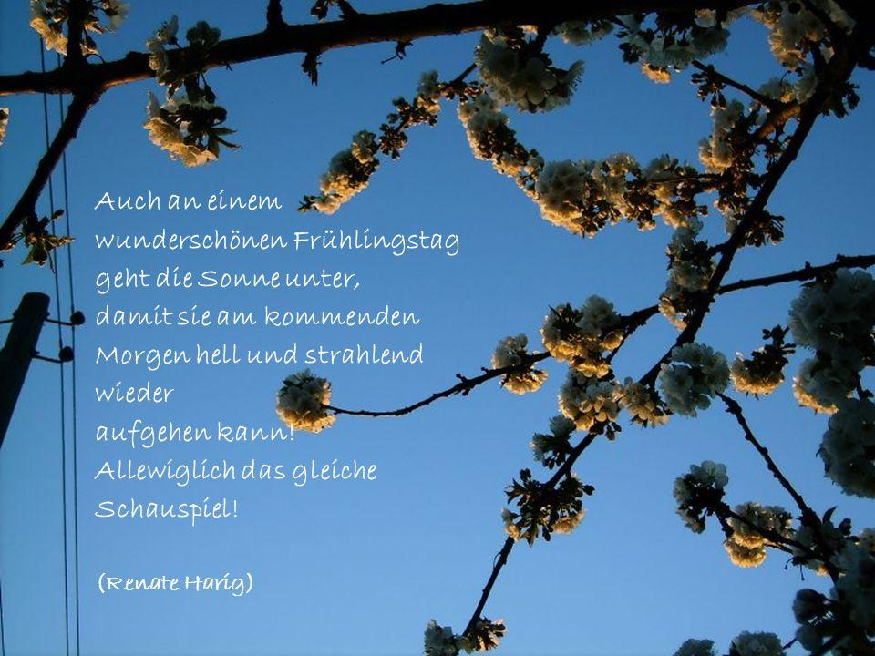 wunderschönen Frühlingstag geht die Sonne unter,