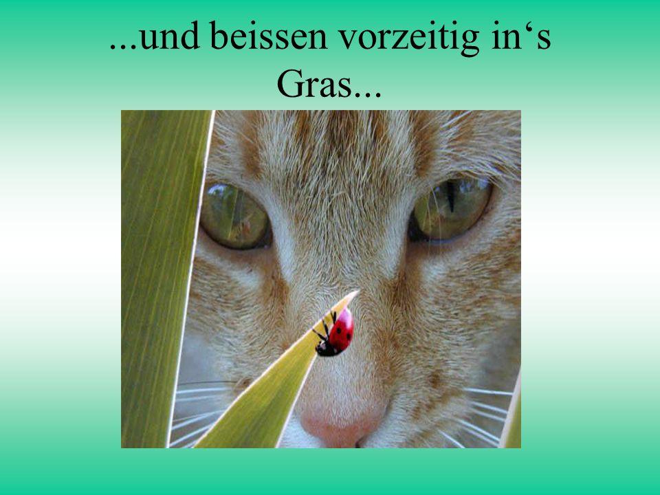 ...und beissen vorzeitig in's Gras...