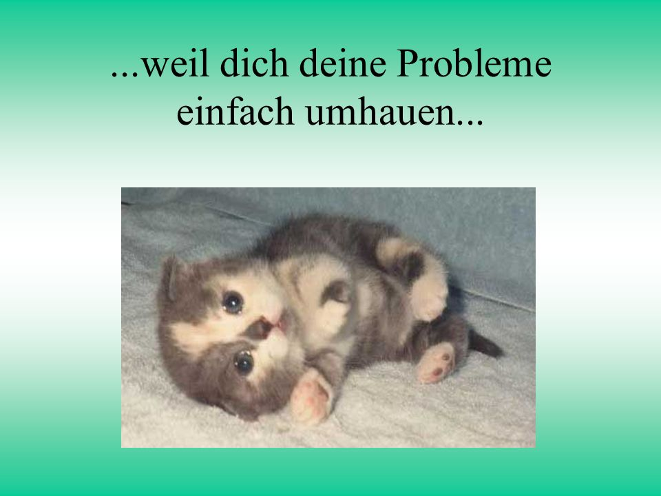...weil dich deine Probleme einfach umhauen...