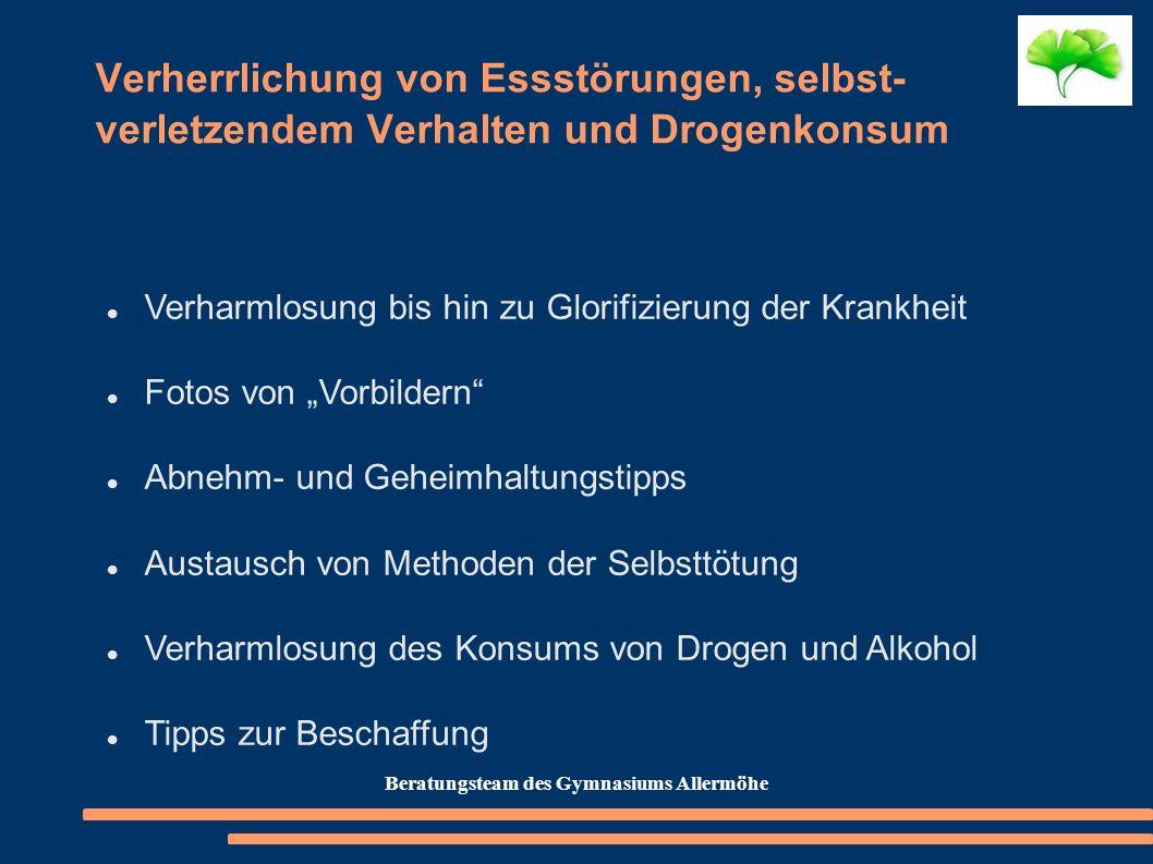 Beratungsteam des Gymnasiums Allermöhe