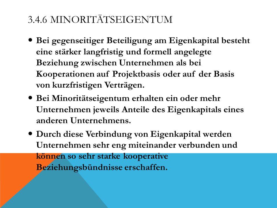 3.4.6 Minoritätseigentum