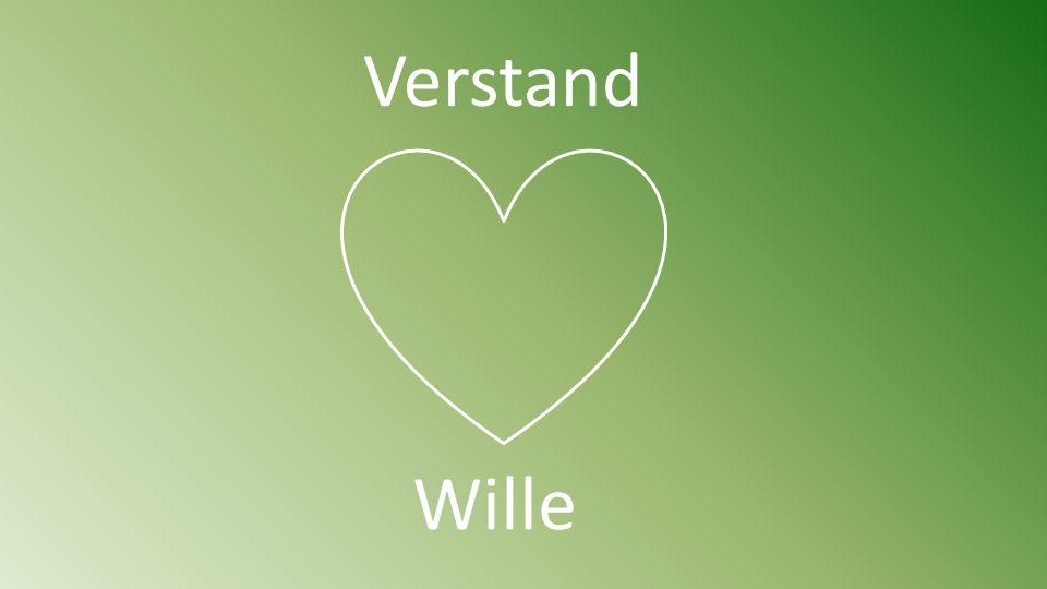 Verstand Wille
