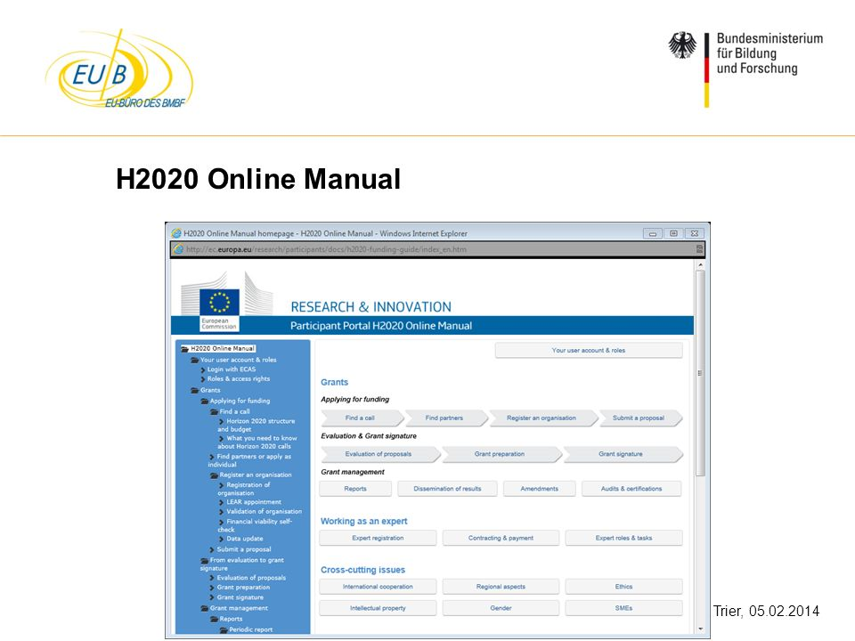 H2020 Online Manual
