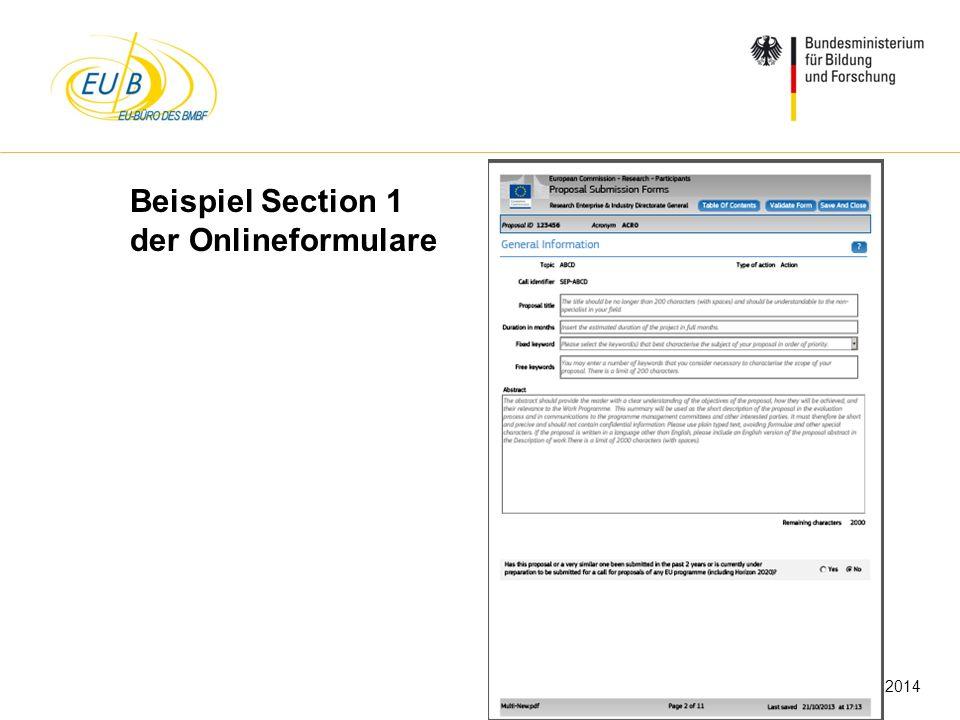 Beispiel Section 1 der Onlineformulare