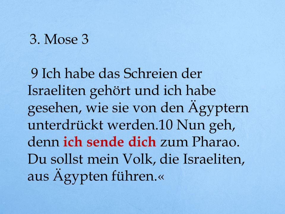 3. Mose 3