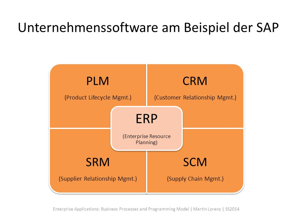 Unternehmenssoftware am Beispiel der SAP