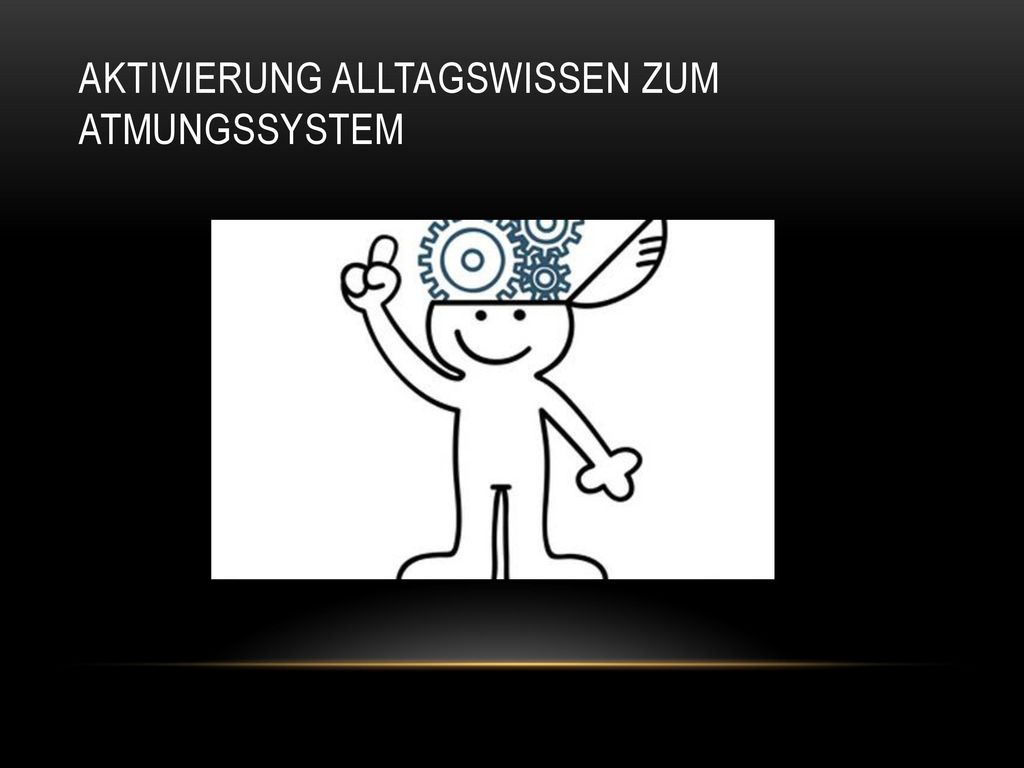 Berühmt Menschliches Atmungssystem Ideen - Anatomie Ideen - finotti.info