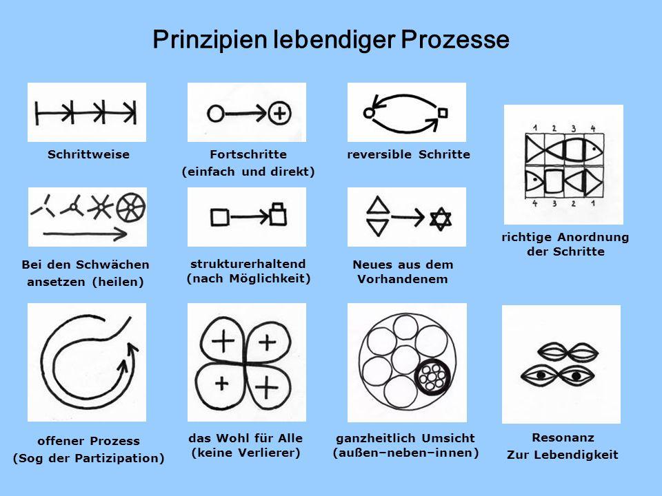 Prinzipien lebendiger Prozesse