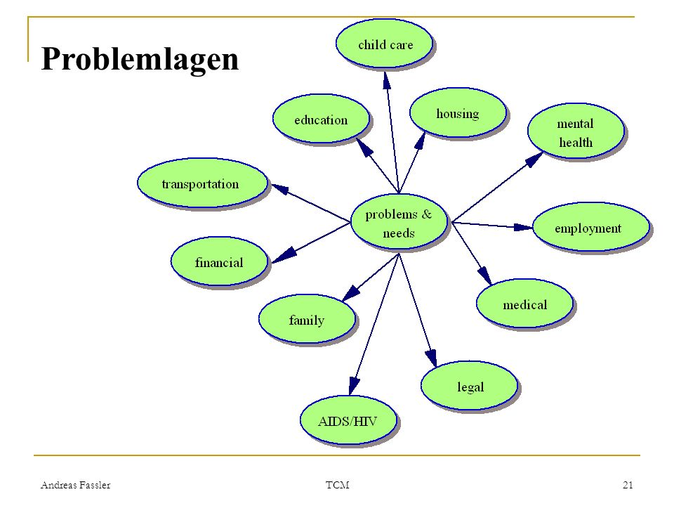 Problemlagen Andreas Fassler TCM