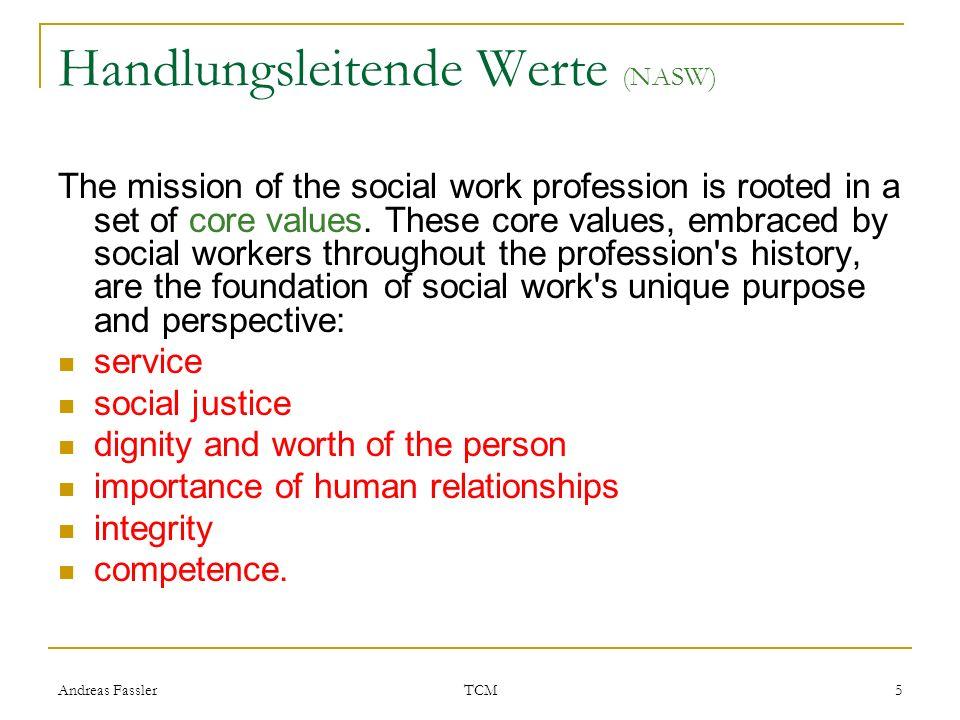 Handlungsleitende Werte (NASW)