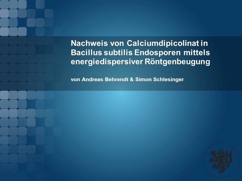 von Andreas Behrendt & Simon Schlesinger