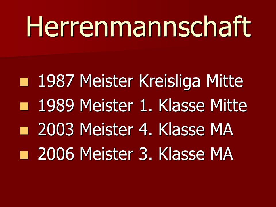 Herrenmannschaft 1987 Meister Kreisliga Mitte