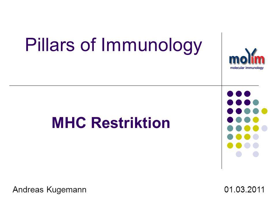 Pillars of Immunology MHC Restriktion.