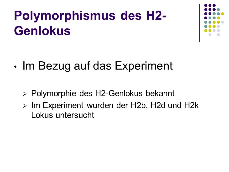 Polymorphismus des H2-Genlokus