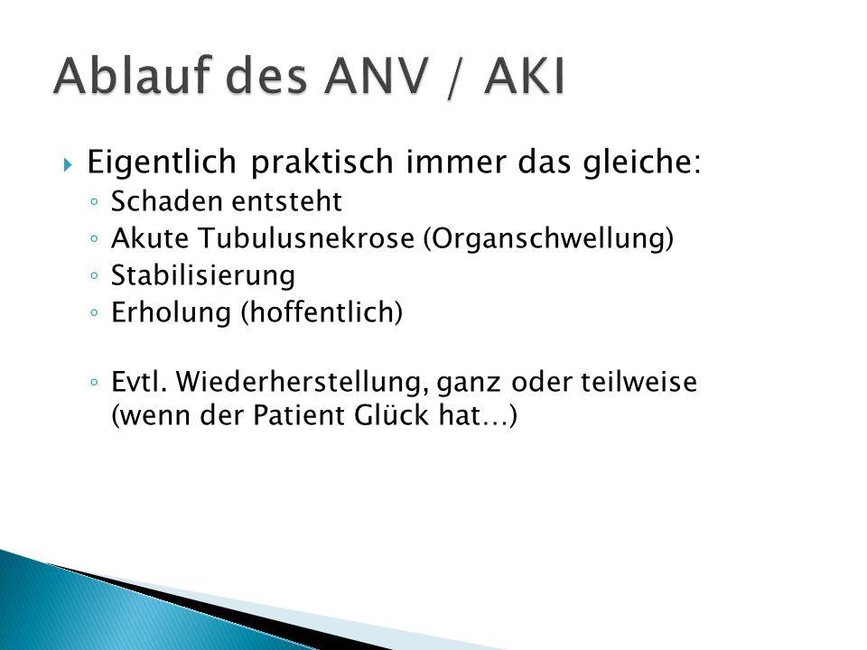Ablauf des ANV / AKI Eigentlich praktisch immer das gleiche: