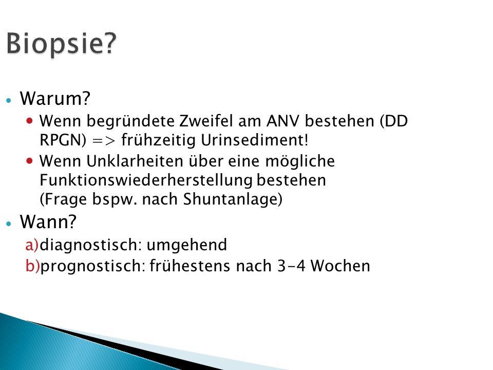 Biopsie Warum Wenn begründete Zweifel am ANV bestehen (DD RPGN) => frühzeitig Urinsediment!