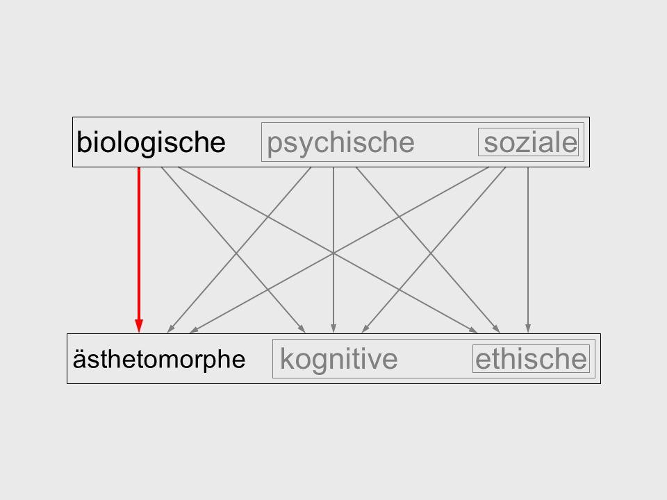 biologische psychische soziale ästhetomorphe kognitive ethische