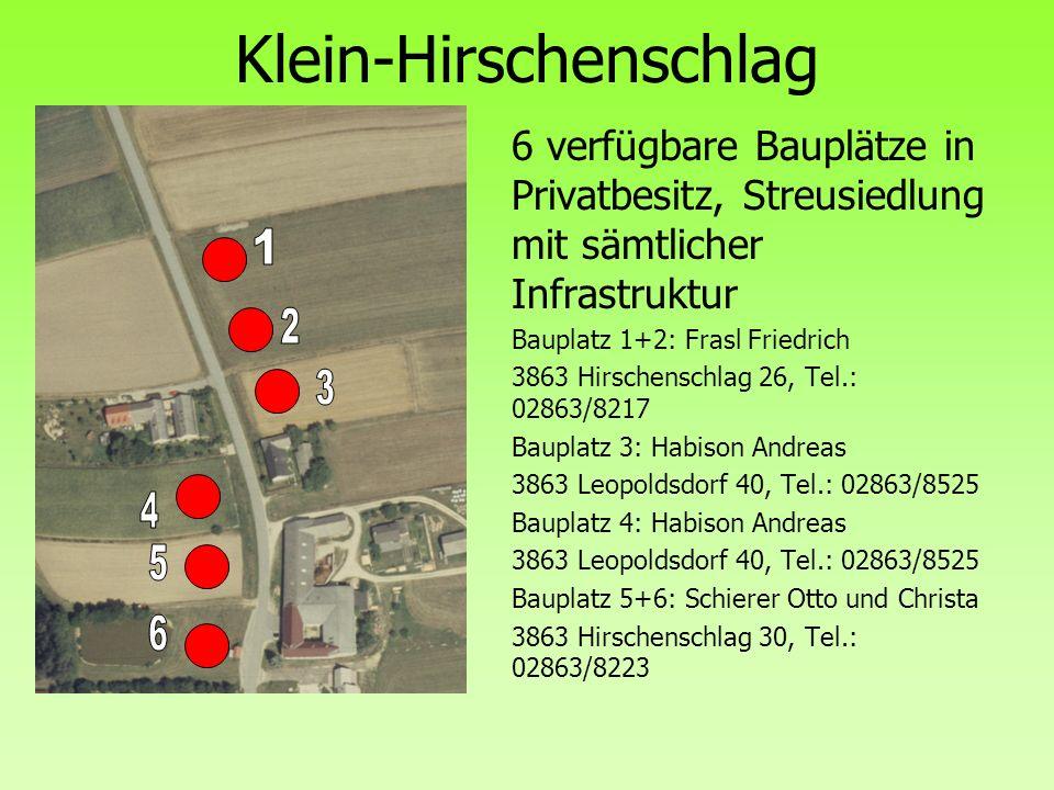 Klein-Hirschenschlag