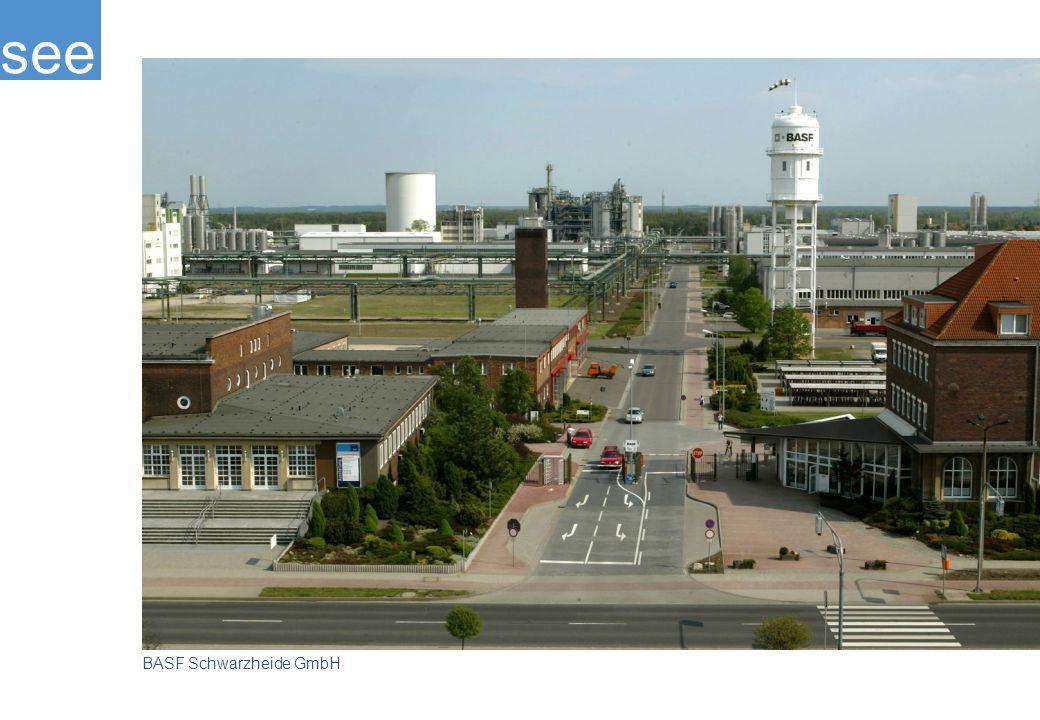 Größtes Unternehmen am Standort ist die BASF Schwarzheide GmbH mit ungefähr 1.900 Mitarbeitern.