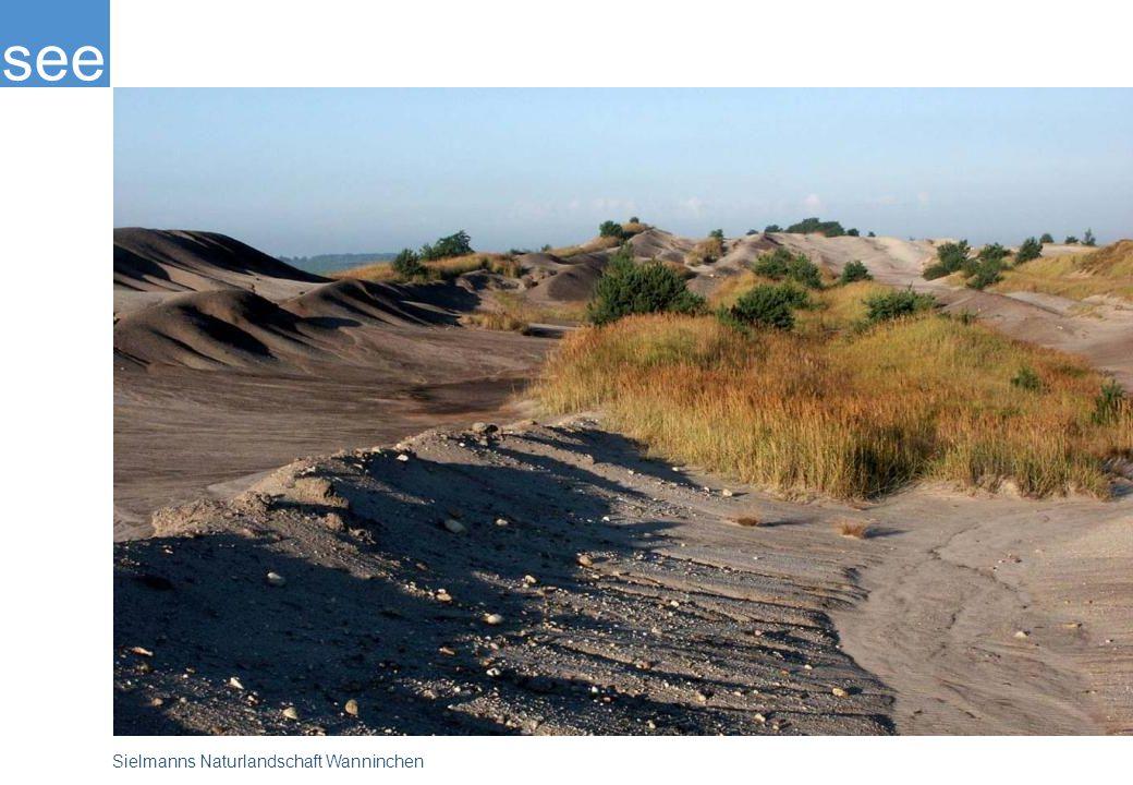 Sielmanns Naturlandschaft Wanninchen ist ein Schutzgebiet ganz neuen Typs: Nach Beendigung des Bergbaus bleiben die Flächen sich selbst überlassen. Den Selbstheilungskräften