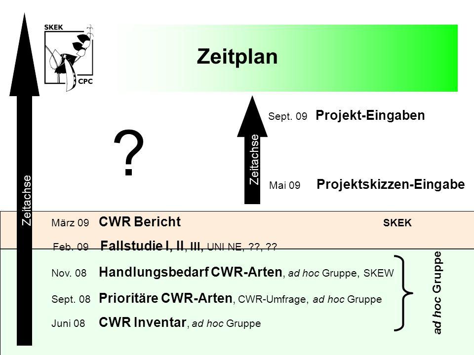 Zeitplan Zeitachse Zeitachse ad hoc Gruppe Sept. 09 Projekt-Eingaben