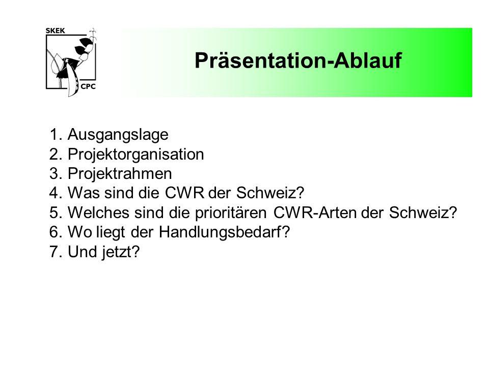 Präsentation-Ablauf Ausgangslage Projektorganisation Projektrahmen