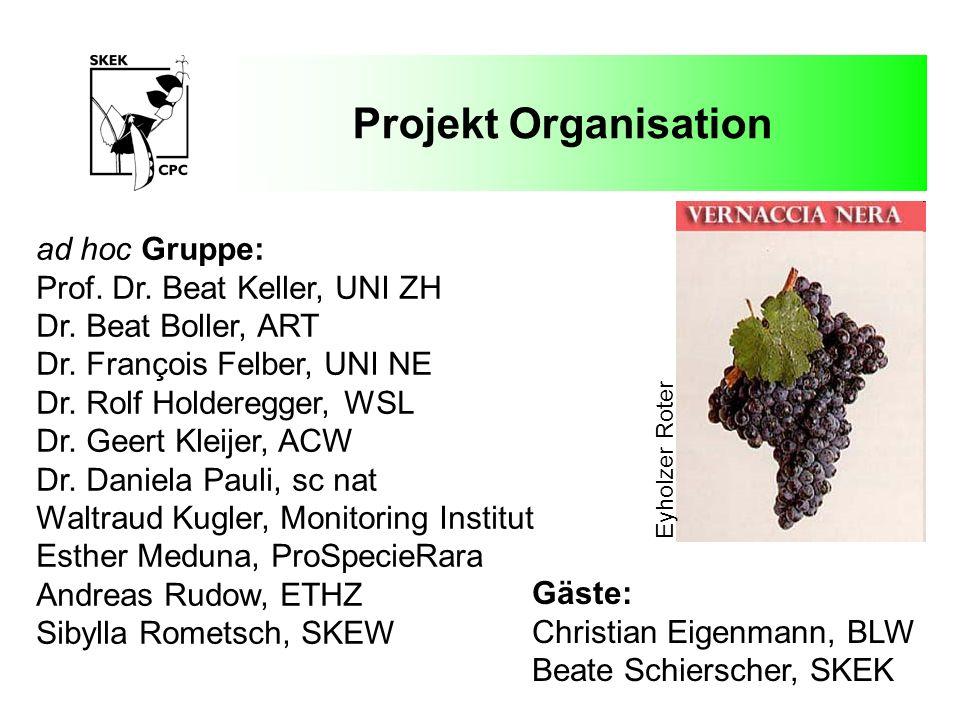 Projekt Organisation ad hoc Gruppe: Prof. Dr. Beat Keller, UNI ZH