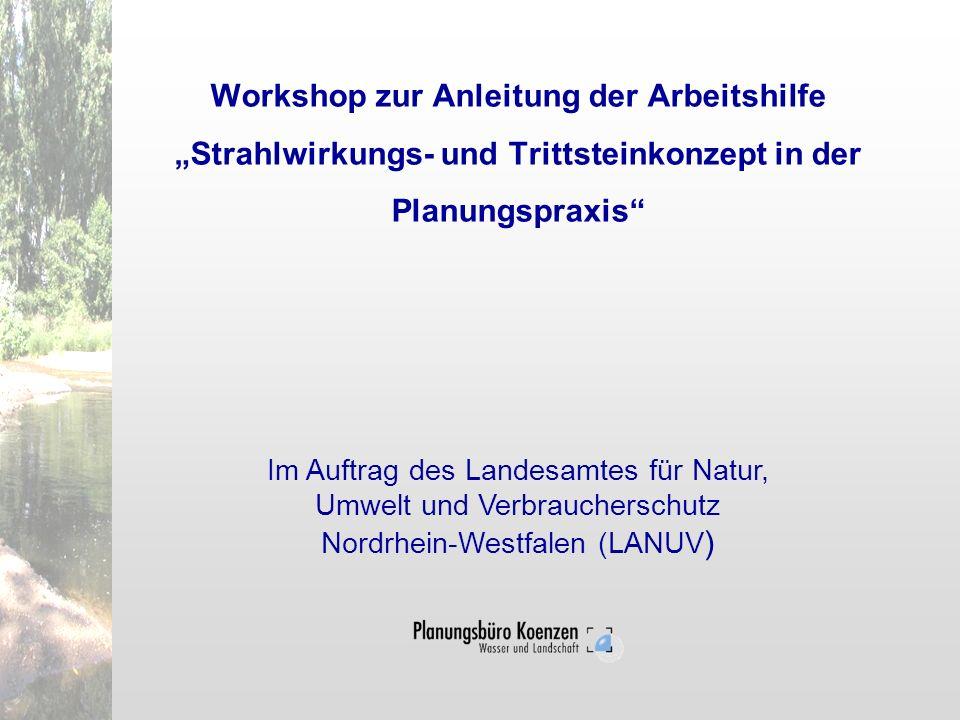 """Workshop zur Anleitung der Arbeitshilfe """"Strahlwirkungs- und Trittsteinkonzept in der Planungspraxis"""