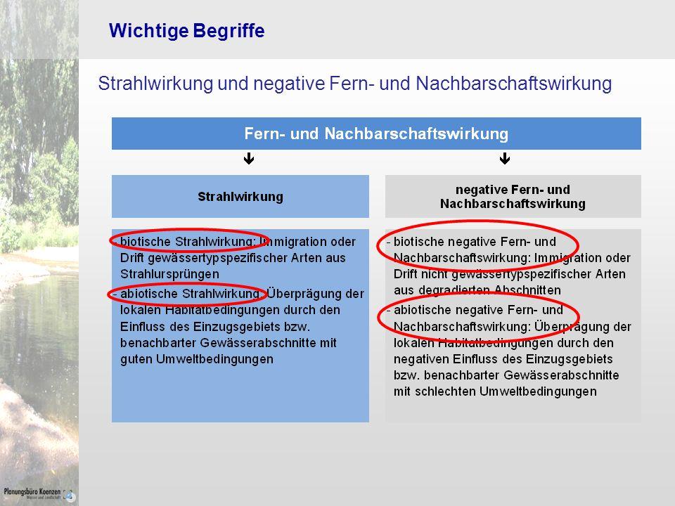 Wichtige Begriffe Strahlwirkung und negative Fern- und Nachbarschaftswirkung