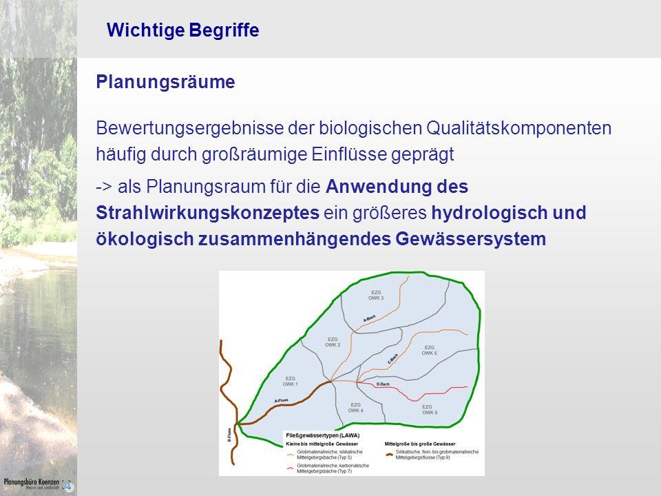 Wichtige Begriffe Planungsräume. Bewertungsergebnisse der biologischen Qualitätskomponenten häufig durch großräumige Einflüsse geprägt.