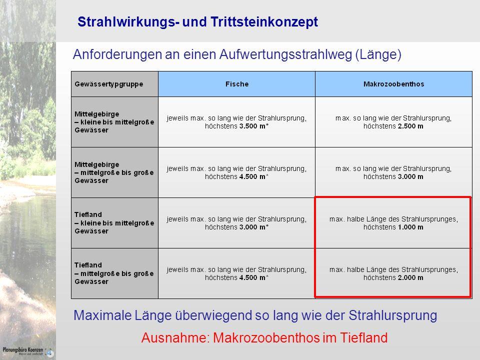 Strahlwirkungs- und Trittsteinkonzept