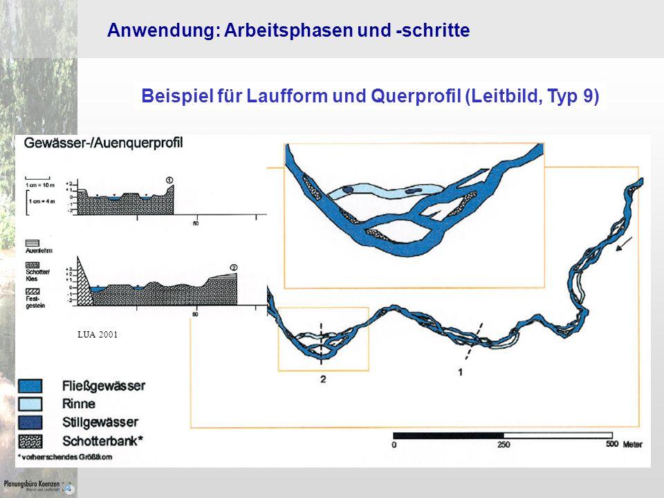 Beispiel für Laufform und Querprofil (Leitbild, Typ 9)
