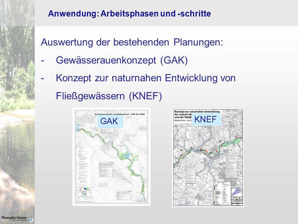 Auswertung der bestehenden Planungen: Gewässerauenkonzept (GAK)