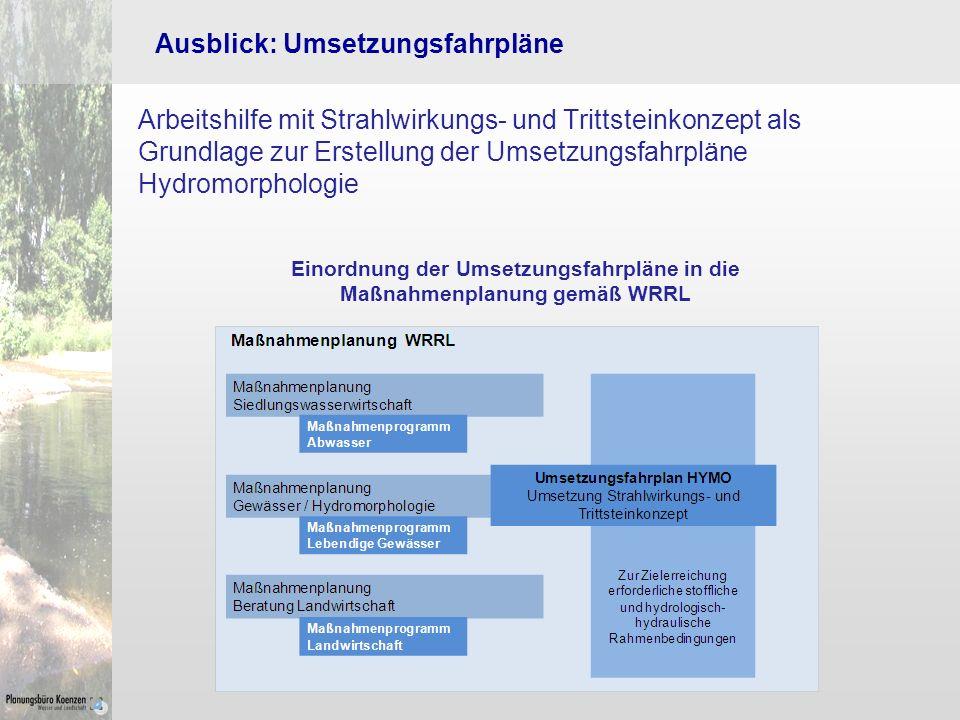 Einordnung der Umsetzungsfahrpläne in die Maßnahmenplanung gemäß WRRL