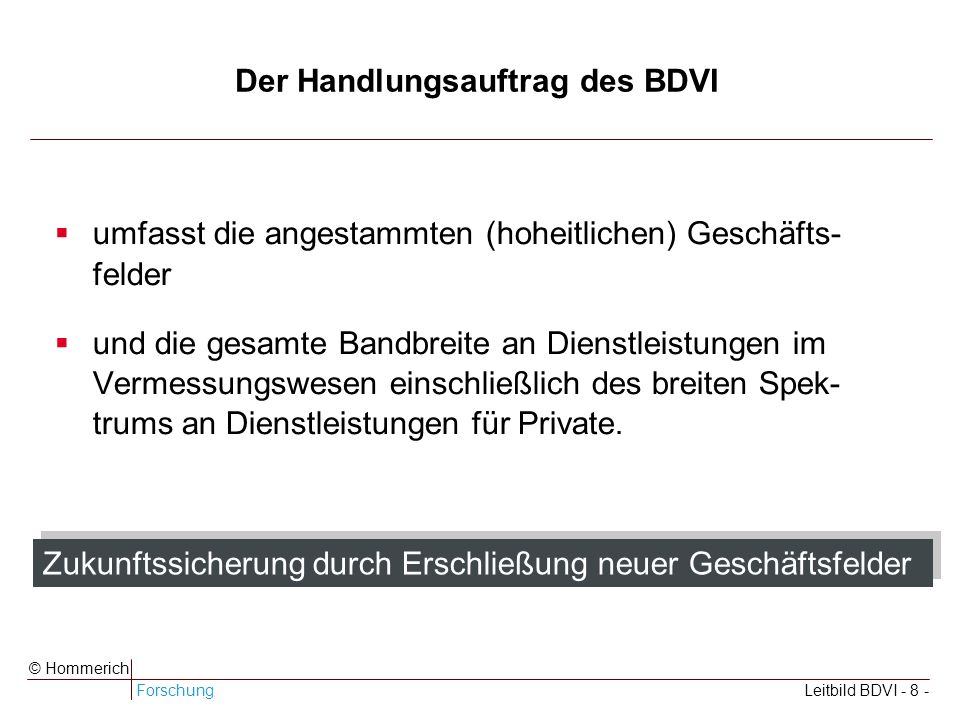 Der Handlungsauftrag des BDVI
