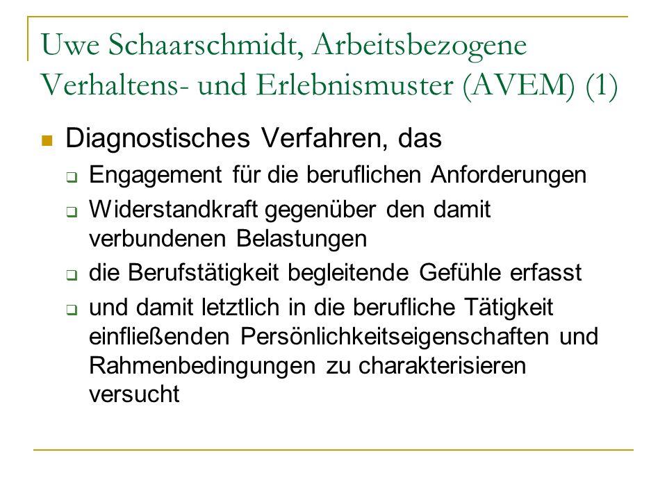 Uwe Schaarschmidt, Arbeitsbezogene Verhaltens- und Erlebnismuster (AVEM) (1)