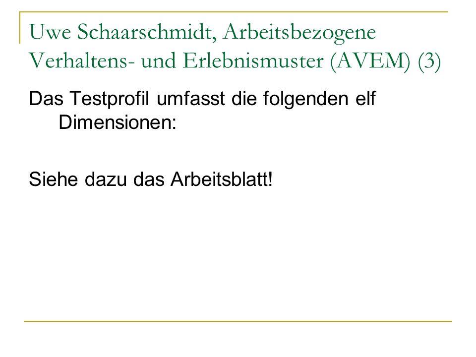 Uwe Schaarschmidt, Arbeitsbezogene Verhaltens- und Erlebnismuster (AVEM) (3)