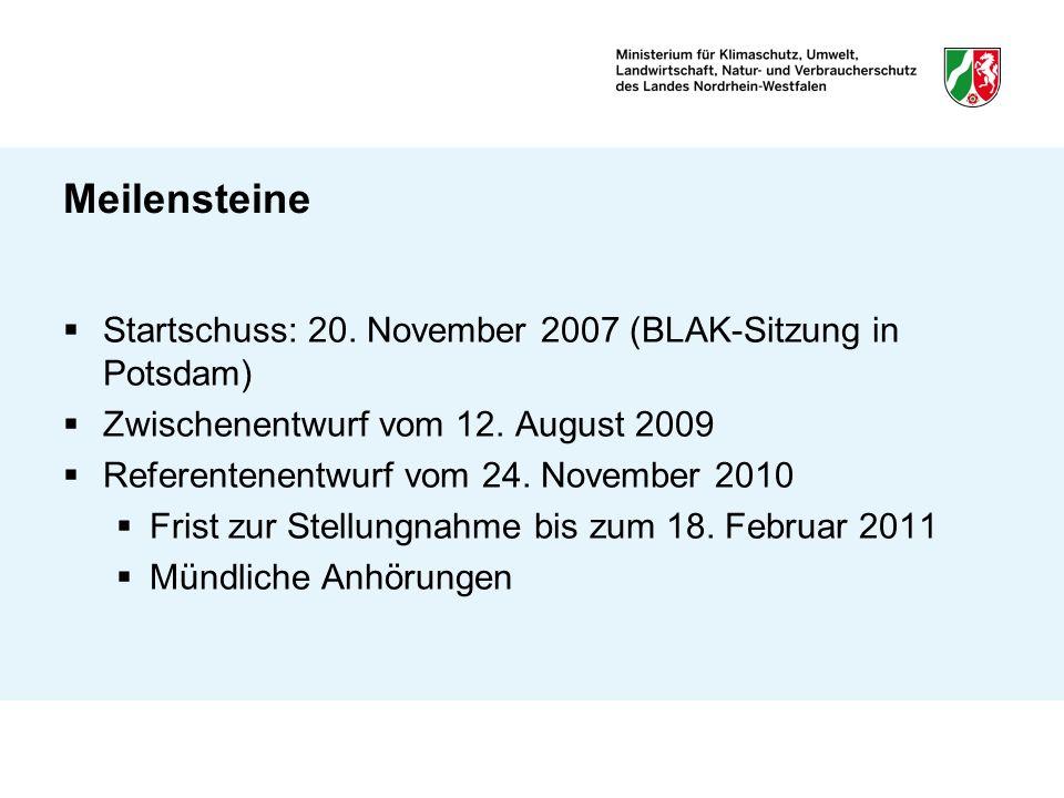 Meilensteine Startschuss: 20. November 2007 (BLAK-Sitzung in Potsdam)