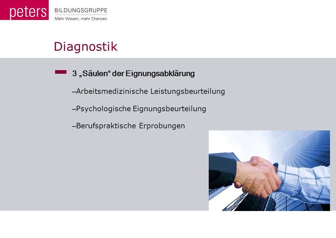 """Diagnostik 3 """"Säulen der Eignungsabklärung"""